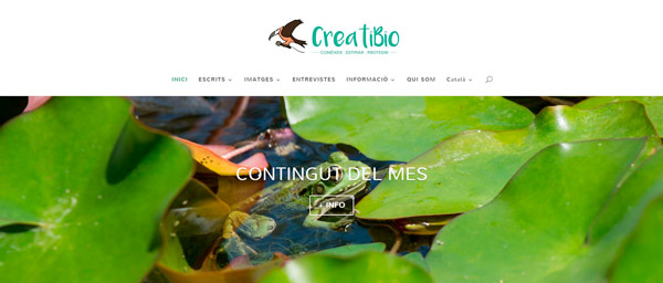 gm-cloud-design-projectes-creati-bio-lloc-web-corporatiu-1