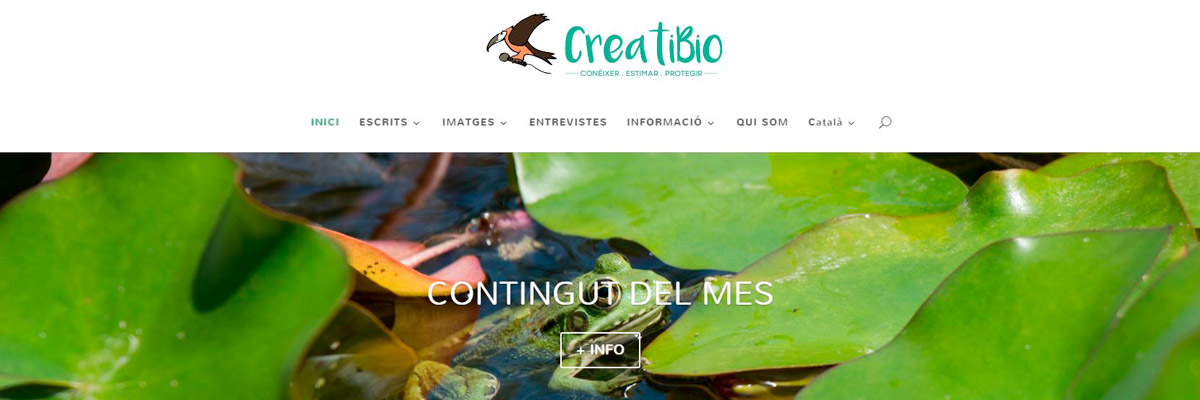 gm-cloud-design-projectes-creati-bio-lloc-web-corporatiu