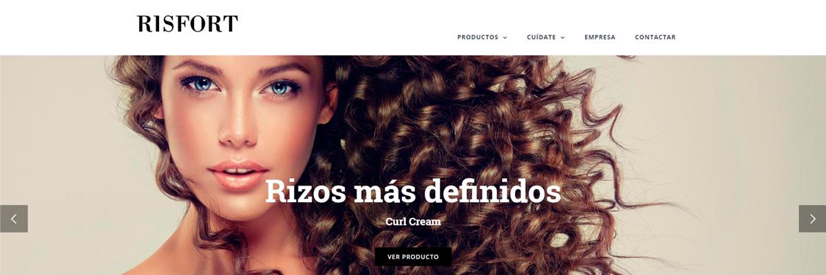 gm-cloud-design-projectes-lloc-web-risfort